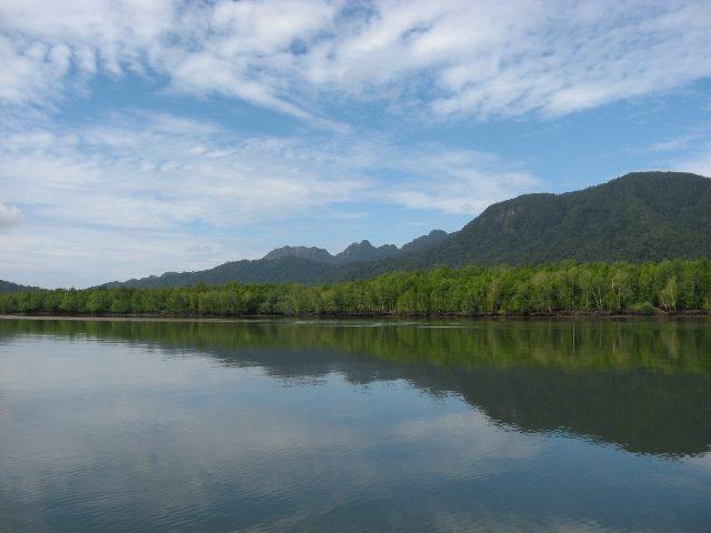 mangrove-kubang badak-river