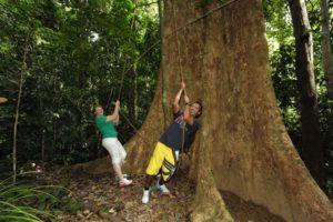 junglewalla-lubuksembilang-trekking-langkawi-11