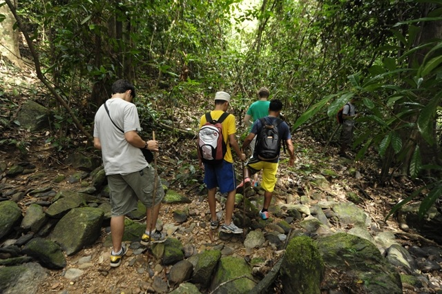 Trekking In Langkawi Rainforest Hilly Terrain With