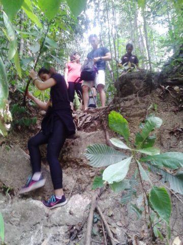 Junglewalla- Jungle Trekking Langkawi