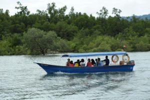 cruising-mangrove-tanjung-rhu-langkawi