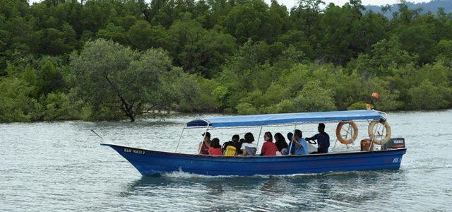 Geopark Mangrove Cruise