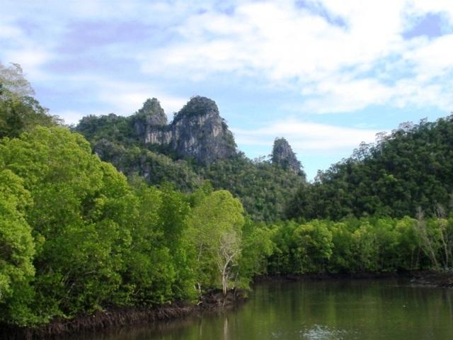 mangrove-kilim-river