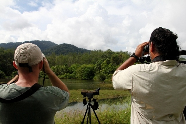 Birding-langkawi-with Irshad