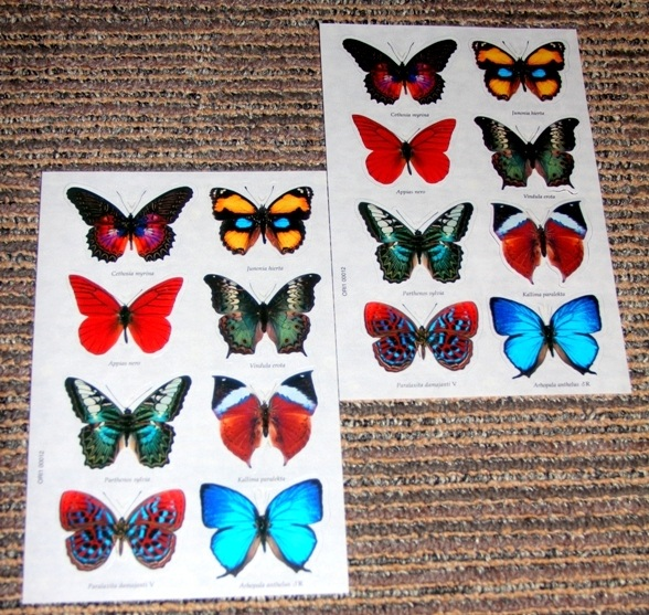 butterfly-3d-stickers-2