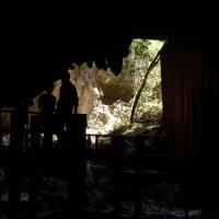 kenong-rimba-park-(3)