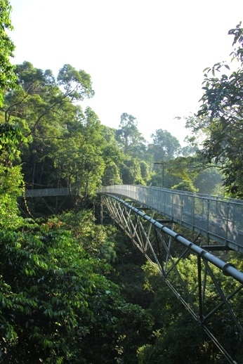 Sedim Rainforest Canopy Walkway