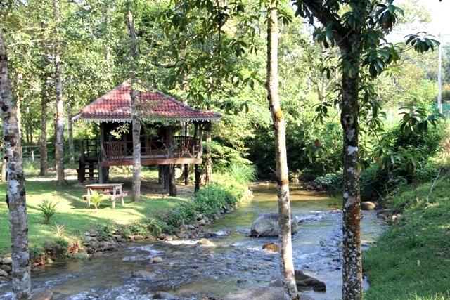 Sedim Rainforest Canopy Walkway