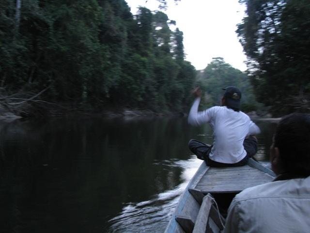 Wilds of Ulu Muda