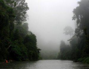wilds-of-ulu-muda